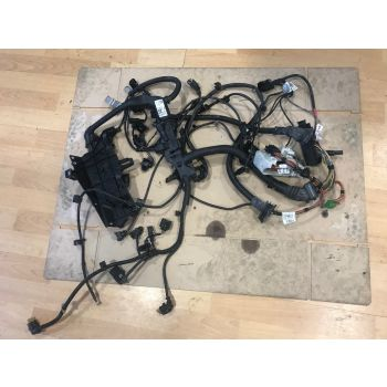BMW F20 F30 10-15 MANUAL 116d 118d 316d 318d ENGINE WIRING LOOM HARNESS 8507879 8586172 B276 *248